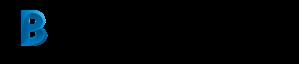 BIM Workflow
